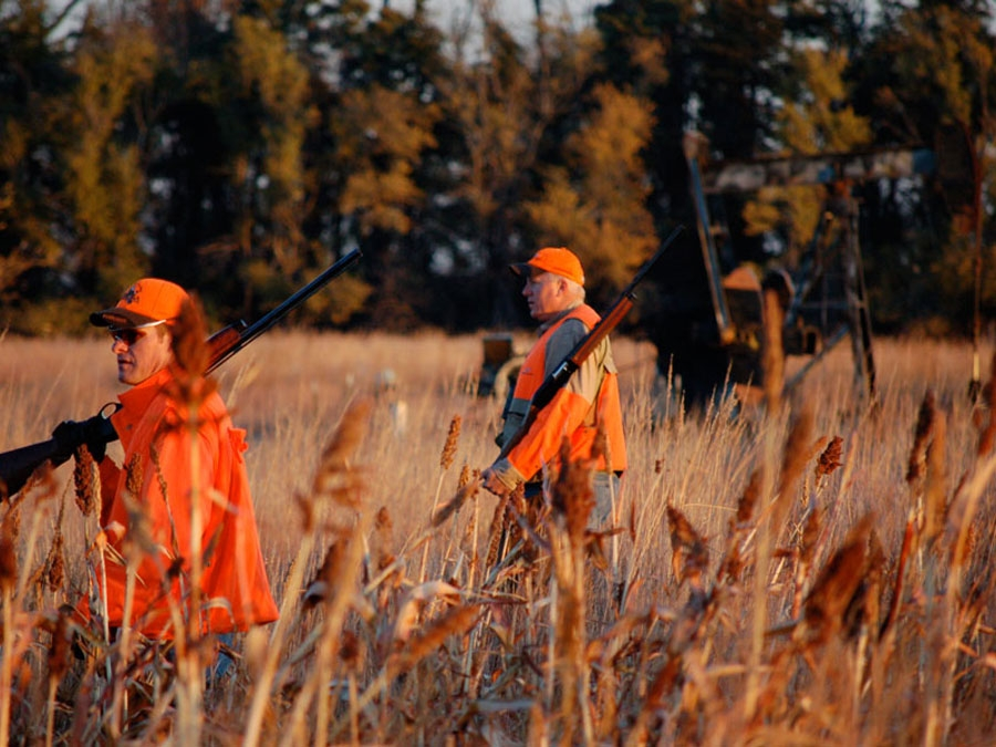 The Kansas Hunt of Your Dreams