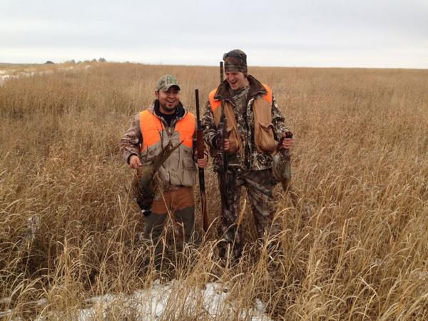 Why Upland Inn for Your Pheasant Hunt?